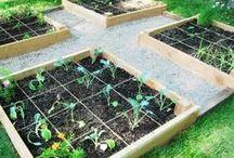♡ Maison ♡ Plantes et jardin