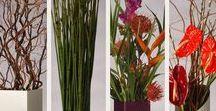 Modern flower display