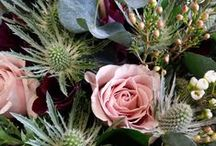 Winter Bouquets 2013/14 / November, December and January