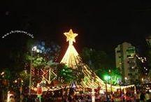 NAVIDAD EN COLOMBIA / En la navidad Cristiana los colombianos hacemos una fiesta de amor y convivencia humana