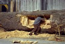 arte madera / wood art