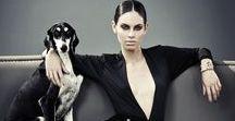 Fashion & Dogs