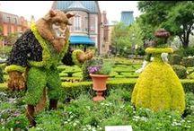 Ideas for my Secret Garden