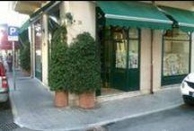 RIPALTA presso ERBORISTERIA QUADRIFOGLIO / PRESSO L' ERBORISTERIA QUADRIFOGLIO  Via Sant' Andrea, 28 - 55049 - Viareggio (LU) 0584 44067 TROVI I PRODOTTI DELLA RIPALTA