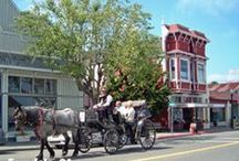 Victorian Village of Ferndale, California / by Gingerbread Mansion Inn