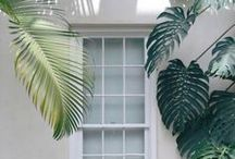 HOME DECOR IDEAS // All I See Is Green / www.elifkadioglu.com
