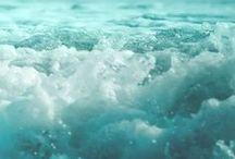 H2O / Liquid Crystals