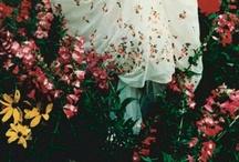Wonderland / Tytöt, ja että se kaunista ja kamalaa, ilo ja kuolema. Anna G. tavoittaa sen upeasti.