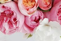 wedding {bouquets}