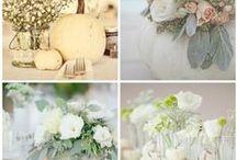 Meghan's Wedding / by Meghan Babcock