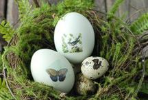 Easter / {Easter Treats, Decorations & Musings} / by Alison Oswell