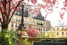 La vie en rose / Paris