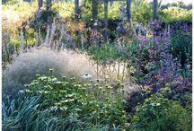 TRÄDGÅRD: INSPIRATION TILL VÅR EGEN / Vår trädgård. Inspiration, idéer, drömmar.