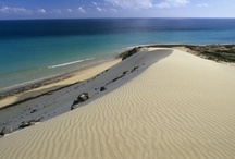 Canary Islands / Travelopo offers Luxury Holiday Villas & Apartments in The Canary Islands , Book your Canaries Holiday villa or apartment with Travelopo.com