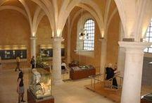 Auxerre et ses musées
