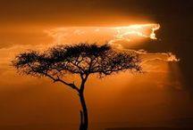África / Destinos y lugares que descubrir en África