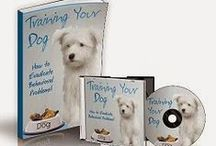 eBooks / eBooks: Guides, Health, Mind, Body, Diet, Teeth Whitening, Cookbook, Animal Care & Pets, Puppy Training, Training Tools