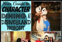 Disneyland Resort / Our Disneyland Board. Information on Disneyland Resorts, dining, touring tips and more.