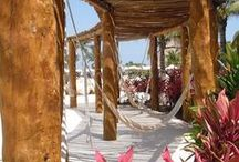 Decorate Your Business / Decorate Your Business with hammocks and hanging chairs Brasilchic