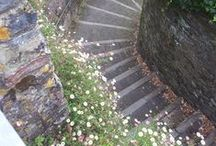 The 39 steps... / Dedicated to the Postmen of Dartmouth - a few more to go to get to 39! #Dartmouthuk is full of steps, most of them beautiful.