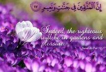 Jannah (Paradise/Heaven) / اللهم ادخلنا الجنة بغير حساب ولا سابقة عذاب