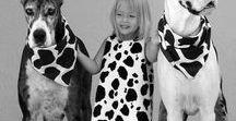 Bianco e nero / le foto in bianco e nero hanno un certo fascino
