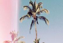 summer!! *-*