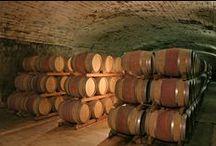 Caves Mont-Redon / Découvrez les caves du Château Mont-Redon. Historiques et Technologiques, nos caves sont le patrimoine de notre savoir-faire.