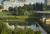 About Us / The Park Town Hotel offers 172 immaculate guest rooms, many with spectacular river views. Established in 1958, the Park Town Hotel is still locally and family operated in the heart of Saskatoon, Sk.