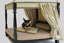 Pampered Pets