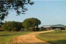 Country Homes and Acreage / San Jacinto County Texas