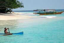 """Gili Trawangan, that amazing tropical island / Numerous travel books, guides and newspaper supplements have sung Gili Trawangan's praises.  Many have given the small island a """"must visit"""" recommendation and still regard it as Indonesia's best kept secret...a paradise only a short distance from the more strident and crowded Bali. Admire pictures of irresistable sunny beaches, island life under palms, all those blues, azures, turquoises and aquamarines of a tropical sea, and the days ending with spectacularly glorious sunsets."""