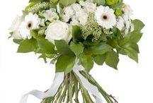 Zeg het met een bloemetje... / Een bos bloemen is altijd een welgekomen geschenk, wat de gelegenheid ook is. Onze bloemisten hebben voor tal van gelegenheden - waaronder verjaardagen, huwelijken, Valentijn, Moederdag en romantische momenten - een geschikte bloemencreatie die u kan laten versturen naar de gelukkige ontvanger. Ontdek onze leuke creaties...