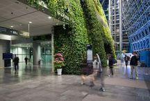 IQ GARDEN green architecture / Bartosz Dankiewicz