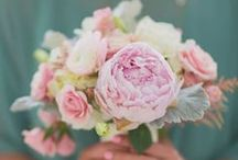 Květiny / Beautiful flowers