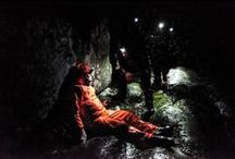 Dartmoor Rescue