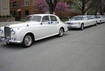 www.royalty-limo.com / Wedding Specialists for over a decade! Serving all Chicago Land & suburbs 708-229-2944