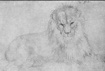 Albrecht Dürer / 1471-1528