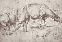 Rubens / 1577-1640