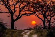 Inspiration ~ Africa