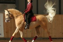 ❥ Equestrian ❥ / by Proudly Preppy