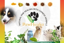 Pet Herbs / This is the website which offers Chinese herbal formulations that are made for dogs and cats