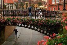 romania / my beautiful country