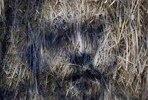 David Loom-Borondo/Arena delle balle di paglia / Dipinti di Gonzalo Borondo all'Arena delle balle di paglia di Cotignola luglio 2013