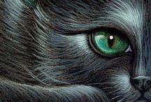 ...:::::::::::IMAGINE COM MAGIA:::::::::...... / Este painel traz imagens interessantes, magicas que levam ao nosso imaginário interno e Secreto!!  Bruxas, Fadas, Mágicos, seres de Luz, Magos e muito mais....