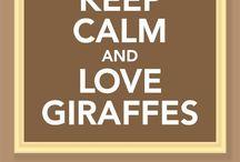 Giraffes / My favourite animal