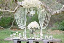 Wedding Decor & Ideas / Ideas for inspiring wedding decor, favors, florals, and more