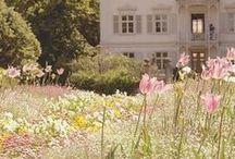 Garden and Interiors