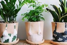 Pots & Plants ✖ / Plants & crafty ideas for their pots.
