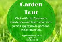 Victorian Era Gardens / A board about Victorian Era Gardens, including some of the plants here at The Museum.